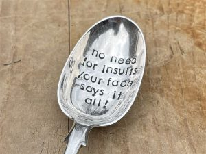 Silver Plate No Need For Insults Your Face Says It All Serving Spoon
